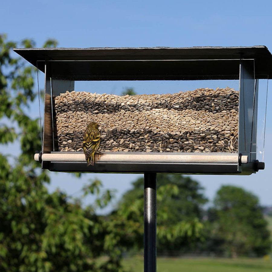 Transparentes Vogelhaus aus Edelstahl, Acrylglas, Schiefer und Holz (rechteckig)
